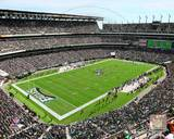 Lincoln Financial Field 2013 Photo