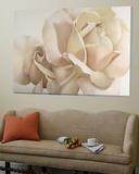 Romantic White Rose Plakater av Yvonne Poelstra-Holzaus