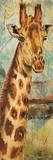 New Safari on Teal I Kunstdruck von Patricia Quintero-Pinto