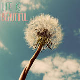 Life is Beautiful Posters by Gail Peck