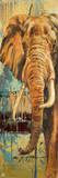 New Safari on Teal II Poster von Patricia Quintero-Pinto