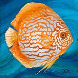Vibrant Sea Life II Poster by Patricia Quintero-Pinto
