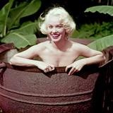 Mamie Van Doren Photo
