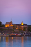 Akershus Fortress and Harbour, Oslo, Norway, Scandinavia, Europe Photographic Print by Douglas Pearson