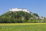 Fortress Hohensalzburg, Salzburg, Salzburger Land, Austria, Europe Photographic Print by Markus Lange