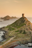 Tour De La Parata and the Islands of Iles Sanguinaires, Corsica, France, Mediterranean, Europe Photographic Print by Markus Lange