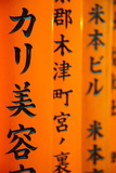 Detail of Script Written on the Torii Gates Photographic Print by Gavin Hellier