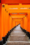 Red Torii Gates, Fushimi Inari Taisha Shrine, Kyoto, Kansai Region, Honshu, Japan, Asia Photographic Print by Gavin Hellier