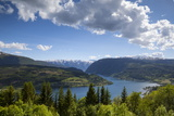 Elevated View over the Picturesque Ulvik Fjord, Ulvik, Hordaland, Norway, Scandinavia, Europe Photographic PrintDoug Pearson