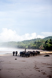 Buffalo Herders on the Beach in Sumba, Indonesia, Southeast Asia, Asia Photographic Print by James Morgan