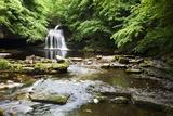 West Burton Waterfall in Summer Photographic Print by Mark Sunderland