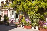 A Cafe in the Backstreets of Ile De La Cite, Paris, France, Europe Photographic Print by Julian Elliott