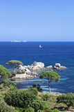 Beach of Palombaggia, Corsica, France, Mediterranean, Europe Photographic Print by Markus Lange
