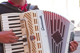 A Street Musician Plays the Accordion, Lyon, Rhone, Rhone-Alpes, France, Europe Photographic Print by Mark Sunderland