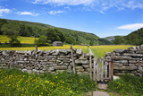 Dry Stone Wall and Gate in Meadow at Muker Photographic Print by Mark Sunderland