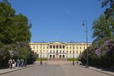 Royal Palace (Slottet), Oslo, Norway, Scandinavia, Europe Papier Photo par Doug Pearson