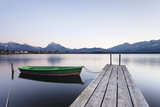 Rowing Boat on Hopfensee Lake at Sunset, Near Fussen, Allgau, Allgau Alps, Bavaria, Germany, Europe Photographic Print by Markus Lange