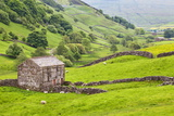 Field Barn Below Kisdon Hill Near Angram in Swaledale Reproduction photographique par Mark Sunderland