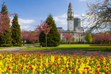City Hall, Alexandra Gardens, Cathays Park, Cardiff, Wales, United Kingdom, Europe Photographic Print by Billy Stock