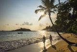 Mirissa Beach, Couple Taking a Romantic Walk under a Palm Tree at Sunset, South Coast Photographic Print by Matthew Williams-Ellis
