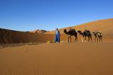 Moroccan Camel Driver Photographic Print by Stuart Black