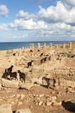 Goats Going into the Bath House Ruins, Apollonia, Libya, North Africa, Africa Photographic Print by Oliviero Olivieri