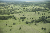 Masai Mara National Reserve, Kenya, East Africa, Africa Photographic Print by Angelo Cavalli