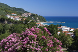View over Resort, Agios Ioannis, Pelion Peninsula, Thessaly, Greece, Europe Photographic Print by Stuart Black