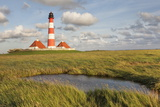 Westerheversand Lighthouse, Westerhever, Eiderstedt Peninsula, Schleswig Holstein, Germany, Europe Photographic Print by Markus Lange