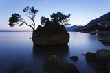 Tree on a Rock in the Sea, Brela, Makarska Riviera, Dalmatia, Croatia, Europe Photographic Print by Markus Lange
