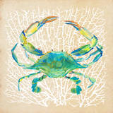 Sealife Crab Prints by Julie DeRice