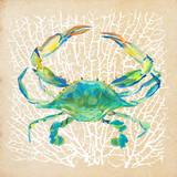Sealife Crab Prints by Julie DeRice