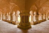 The Cloisters of Fontenay Abbey, UNESCO World Heritage Site, Cote D'Or, Burgundy, France, Europe Photographic Print by Julian Elliott