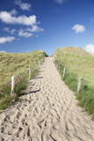 Path Through Dunes, Sylt, North Frisian Islands, Nordfriesland, Schleswig Holstein, Germany, Europe Photographic Print by Markus Lange