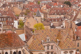 Looking Out over the Rooftops of Dijon, Burgundy, France, Europe Photographic Print by Julian Elliott