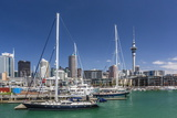 View of the City of Auckland from Auckland Harbour, North Island, New Zealand, Pacific Photographic Print by Michael Nolan