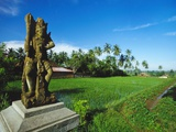 Staue of Raksha in a Rice Field, Ubud, Gianyar, Bali Photographic Print by Robert Francis