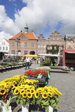 Weekly Market at the Market Place of Husum, Schleswig Holstein, Germany, Europe Photographic Print by Markus Lange