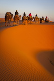 Tourists on Camel Safari, Sahara Desert, Merzouga, Morocco, North Africa, Africa Photographic Print by Doug Pearson