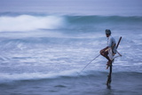 Stilt Fishing, a Stilt Fisherman in the Waves at Midigama Near Weligama, South Coast Photographic Print by Matthew Williams-Ellis