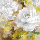 White Modern Peonies I Posters by Lanie Loreth