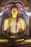 Buddha in Cave 3 (Great New Monastery) Photographic Print by Matthew Williams-Ellis