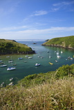 Solva Harbour, Pembrokeshire, Wales, United Kingdom, Europe Photographic Print by Billy Stock
