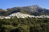 Filoti in Olive Groves, Tragea, Naxos, Cyclades, Greece Photographic Print by Richard Ashworth