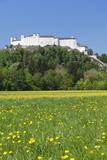 Hohensalzburg Fortress, Salzburg, Salzburger Land, Austria, Europe Photographic Print by Markus Lange