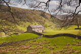 Stone Barn in the Swaledale Area of the Yorkshire Dales National Park Photographic Print by Julian Elliott