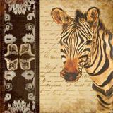 Madagascar Safari IV Prints by Patricia Quintero-Pinto