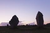 Megaliths of Alignements De Lagatjar, Camaret, Rade De Brest, Brittany, France, Europe Photographic Print by Markus Lange