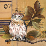 Little Owls I Art by Patricia Quintero-Pinto