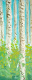 Vibrant Birchwood I Prints by Walt Johnson